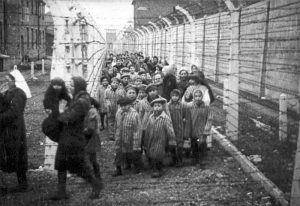 Auschwitz-concentration-camp-14
